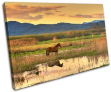 Horse Landscape field Animals - 13-0054(00B)-SG32-LO